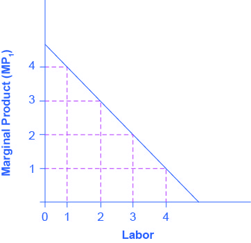 Graph showing the marginal product of labor